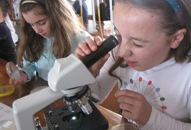 Micro Biologists